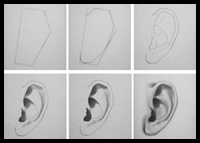 Learn how to draw an ear with the following drawing and shading tutorial