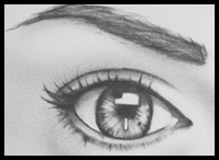 Drawing Portraits Tutorial : Small Section About Eye Brow