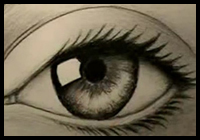 How to Draw an Eye and Its Lashes