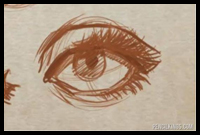 How to Draw an Eye And Create Perfect Eyelids and Eyelashes
