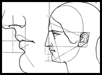 Drawing the Human Head in Correct Proportions