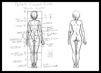 Female Figure Back View Tutorial