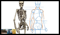 How to draw the Human Figure - Body Construction tutorial