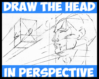 Drawing the human head in perspective