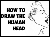 How to Draw the Human Head Step by Step Drawing Tutorial