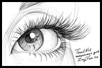 How to Draw Eyelashes Step by Step