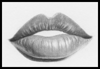 How To Draw Lips Mouth And The Human Face Drawing Tutorials