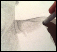 Drawing The Neck And Shoulders