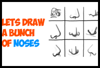 how to draw a nose and the face drawing tutorials drawing how