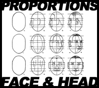 Drawing Face and Head in Correct Proportions